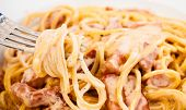image of carbonara  - Spaghetti alla Carbonara made with eggs bacon cheese black pepper and noodles