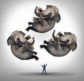 image of juggling  - Leadership management businees concept with a businessman juggler juggling three elephants up in the air as a symbol of managing power and being a strong leader and a metaphor for expertise and skill - JPG