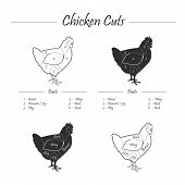 pic of giblets  - illustration of poultry meat cut - JPG