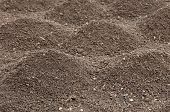 stock photo of humus  - Soil - JPG