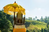 image of hindu-god  - Traditional offerings to gods in a park at Bali
