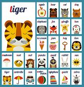 image of cute tiger  - Cute vector alphabet cards for the kids - JPG