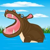 picture of hippopotamus  - Illustration animal hippopotamus in water on background sky - JPG