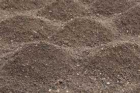 foto of humus  - Soil - JPG