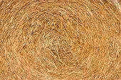pic of haystacks  - Golden hay background bale straw haystack yellow - JPG