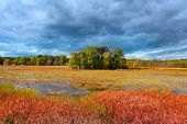 foto of kensington  - Small island in the middle of Kent lake in Michigan on a stormy day - JPG
