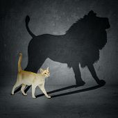 stock photo of politician  - Cat with lion shadow on the wall - JPG