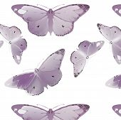 picture of monarch  - set Monarch Butterfly with open wings  top view seamless pattern - JPG