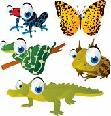 stock photo of cute frog  - vector isolated cartoon cute animals set - JPG