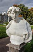 stock photo of tsarskoe  - Statue at Catherine park - JPG