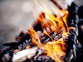 picture of bonfire  - Bonfire - JPG
