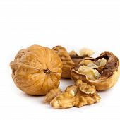 image of walnut  - Walnut and a cracked walnuts isolated on the white background - JPG