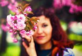 image of lilas  - Young woman smelling a beautiful sakura blossom pink flowers - JPG