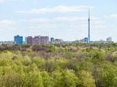 stock photo of house woods  - modern city and green woods in spring day - JPG