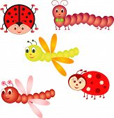 picture of ladybug  - insect cartoon vectors of ladybug and  fly - JPG