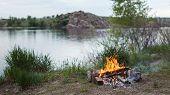 pic of bonfire  - Bonfire in the spring forest - JPG