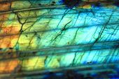 image of labradorite  - labradorite mineral as very nice natural background - JPG