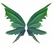 Green Leaf Summer Fae Wings poster
