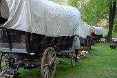 pic of covered wagon  - A line of covered wagons along the trail - JPG