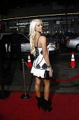 LOS ANGELES - APR 10: Maryse Ouellet (WWE Diva) at the Jackass 3D premiere held at Grauman's Chinese