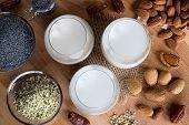 Vegan Plant Milks - Almond Milk, Poppy Seed Milk And Hemp Seed Milk poster