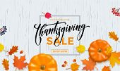 Thanksgiving Autumn Sale Poster Pumpkin Leaf Fall Discount Promo Shop Vector Background poster