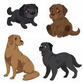 Labrador Icons Set. Cartoon Set Of Labrador Icons For Web Design poster