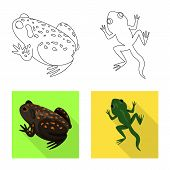 Isolated Object Of Wildlife And Bog Logo. Set Of Wildlife And Reptile Stock Symbol For Web. poster