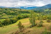 Beautiful Countryside On An Overcast Day. Carpathian Rural District In Mountains. Overcast Rainy Sep poster
