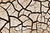 Cracked From Drought Land. Catastrophic Climatic Changes On Earth. Drought. The Results Of Global Wa poster