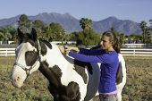 Woman Performs Equine Myofascial Release Technique On The Crest poster