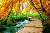 Beautiful Wooden Path In Plitvice Lake, Croatia. poster