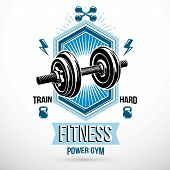 Vector Sport Equipment, Dumbbell With Disc Weight And Kettle Bell. Weight-lifting Gym Conceptual Sym poster