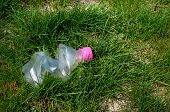 Discarded Plastic Bottle In Green Grass In Summer poster