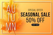 Autumn Sale Banner. Seasonal Background With Fall Leaves. Maple Leaf With Text In Frame. Start Of A  poster