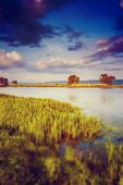 Beautiful view of sinuous river in summer. Southern Buh River, Ukraine, Europe. Beauty world. tilt-s