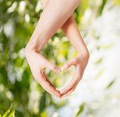 picture of harmony  - eco - JPG