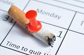 stock photo of quit  - Cigarette Butt Impaled On Calendar - JPG