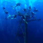 foto of bottomless  - Group of divers exploring ship wreck in the tropical sea - JPG