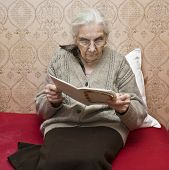 Old Lady Reading Book