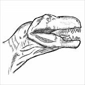 picture of dinosaurus  - Vector hand draw  - JPG