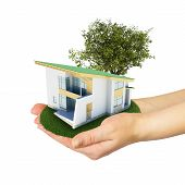 Hands holding a small house with land
