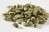 stock photo of cardamom  - Green Cardamom  - JPG