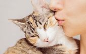 Woman Kisses A Cat