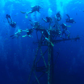 picture of bottomless  - Group of divers exploring ship wreck in the tropical sea - JPG