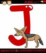 image of jackal  - Cartoon Illustration of Capital Letter J from Alphabet with Jackal Animal for Children Education - JPG