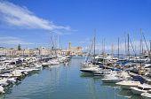 Panoramic view of Trani tourist port. Apulia. poster