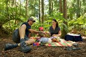 stock photo of redwood forest  - Family having a picnic outdoors in Redwoods Rotorua New Zealand - JPG