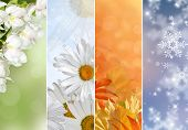 picture of four  - Four bright seasons  - JPG