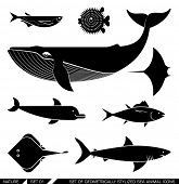 picture of dolphin  - Set of various sea animal icons - JPG